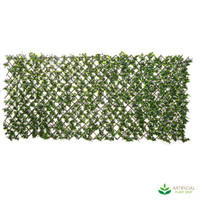 Expandable Willow Trellis 1m x 2m