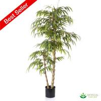 Bamboo Buddha Tree 1.2m (Natural Trunks)