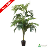 Areca Palm 1.2m with Black Pot