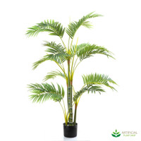 Areca Palm 1.2m (Multi-trunk)