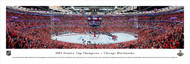 2015 Stanley Cup Championship Panorama Print NHLSC-15