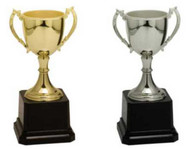 Grand Zinc Cup Trophy - Gold / Silver