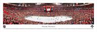 Florida Panthers Panorama Print #1 (Center Ice) - Unframed