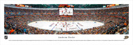 Anaheim Ducks Panorama Print #2 (Center Ice) - Unframed