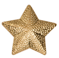 Chenille / Letter Jacket Pin - STAR