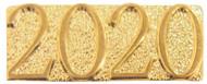 Lapel Pin - 2020 | Letter Jacket Chenille Pin - 2020 (CHEN2020)