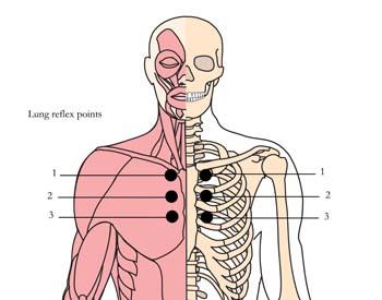 tachyon-products-os-8-bronchial-asthma-tlc-points.jpg