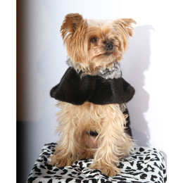 Fur Coat for Dogs