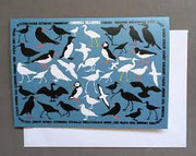 Cornish Seabirds Card