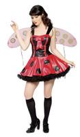 Playful Lady Bug