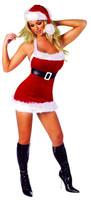 Chic Santa