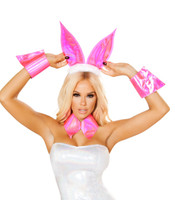 Pink Bunny Accessories Kit