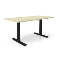 "Height Adjustable 30""x 60"" Ergonomic Business Desk - Aged Porcelain"