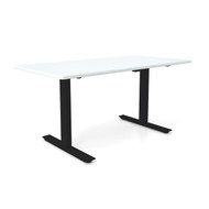 "Height Adjustable 30""x 48"" Ergonomic Business Desk - Icicle"