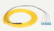 Black Box 3m LC OS2 9-Micron SM Fiber Pigtail 6-Strand OFNR PVC Yellow FOPT50S1-LC-6YL-3
