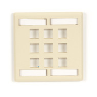 Black Box 9-port Ivory Double-Gang Keystone Wallplate WPT484