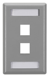 Black Box 2-Port Gray Single-Gang Keystone Wallplate WP461