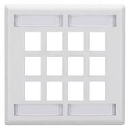 Black Box GigaStation Wallplate, 12-Port, Dual-Gang, White WP494