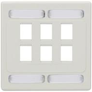 Black Box CAT6a F/UTP Faceplate, Dual-Gang, 6-Port, White WPF482