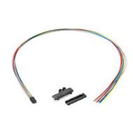 Black Box Fan-Out Kit, 12-Fiber Buffer Tube, 36-in. EFN12-36