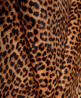 Baby Leopard Brown