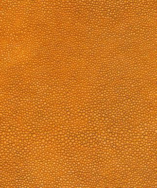 Shagreen Tangerine