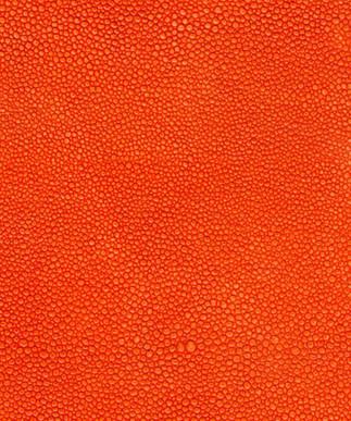 Shagreen Orange