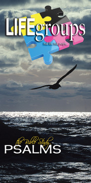 Church Banner featuring Seagull/Sunset with Life Groups Theme