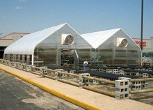 Retail-Mart - Permanent Greenhouse
