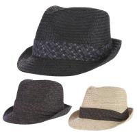 Raffia Fedora Hat small brim