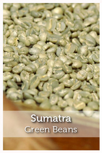 Sumatra Fair Trade Organic Green Coffee Beans