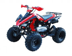ATA-150G TaoTao Kids 150cc Sport ATV