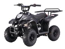 BoulderB1 TaoTao Kids 110CC Utility ATV