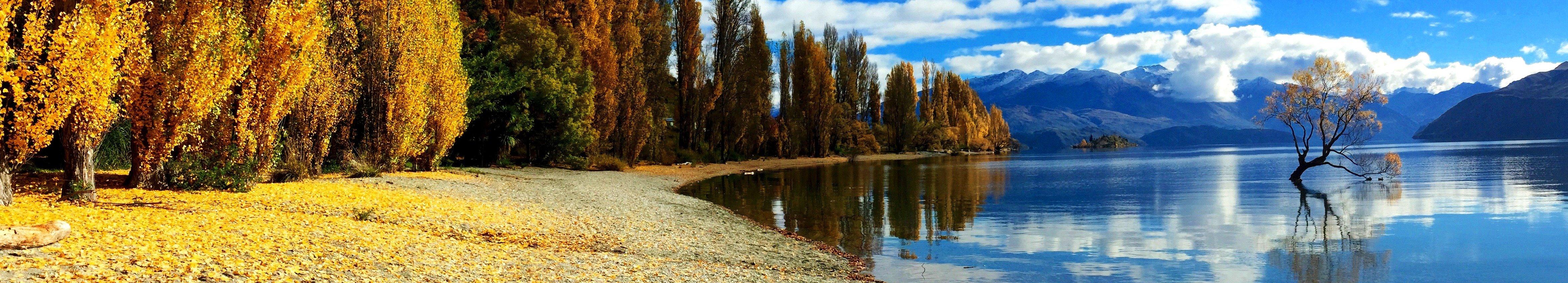 rsz-autumn-trees-colour-that-wanaka-tree-april-2015.jpg