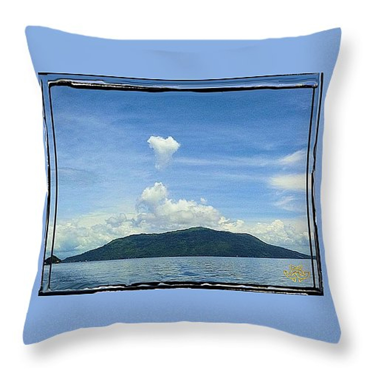 Throw pillow:  To purchase, contact me or play with the interactive site yourself: http://fineartamerica.com/profiles/jane-a-gordon.html