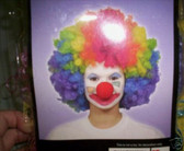 Clown Adult Rainbow Curly Afro Costume Wig NeW