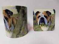 Bulldog Mug and Coaster Set