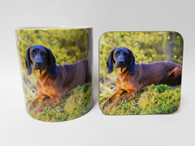 Bavarian Mountain Hound Dog Mug and Coaster Set