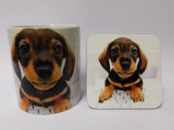 Dachshund Puppy brown and tan on keyboard mug & coaster