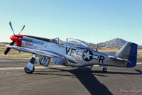 "Malak Wings of Angels WWII Plane Vintage P-51D Mustang ""The Rebel"" Print"