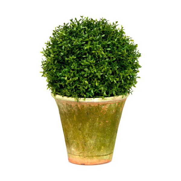 Diane James Home Mini Tea Leaf Topiary