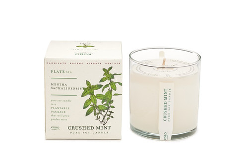 Kobo Seeds - Crushed Mint - Candle