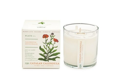 Kobo Seeds - Catalan Calendula - Candle