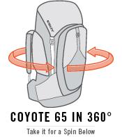 coyote65.jpg