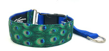 "Peacock 1.5"" Private Prong Collar"