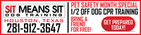 DOG TRAINING WEB BANNER PACKAGE