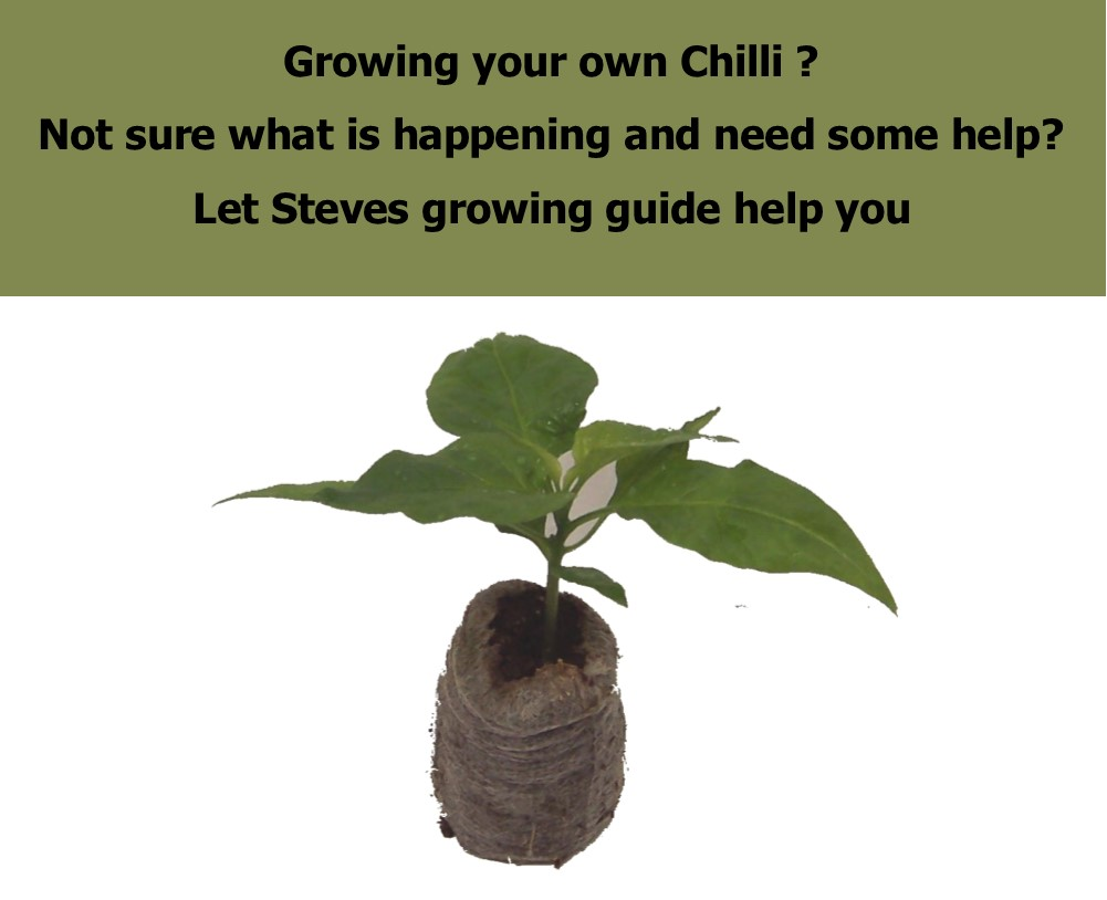 growing-guide.jpg