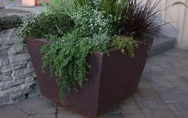 Tapered Corten planter