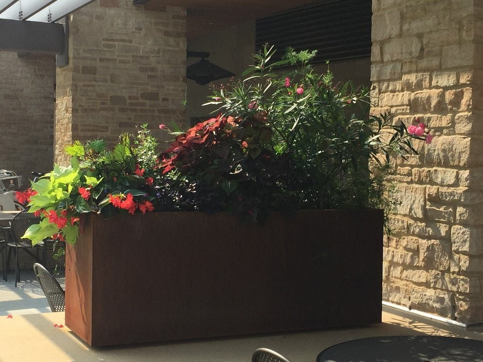 Side view of planter on a university campus