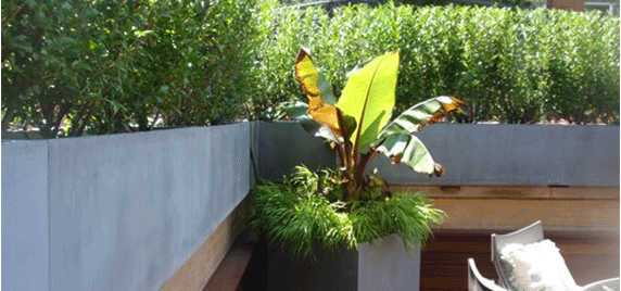 Private Client Roof top Planters